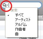 iTunes 検索オプション